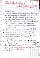 Cofacteurs coenzymes .pdf