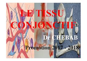 Diapo Tissu Conjonctif (2017-2018).pdf