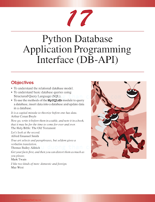 Database Application Programming Interface.pdf
