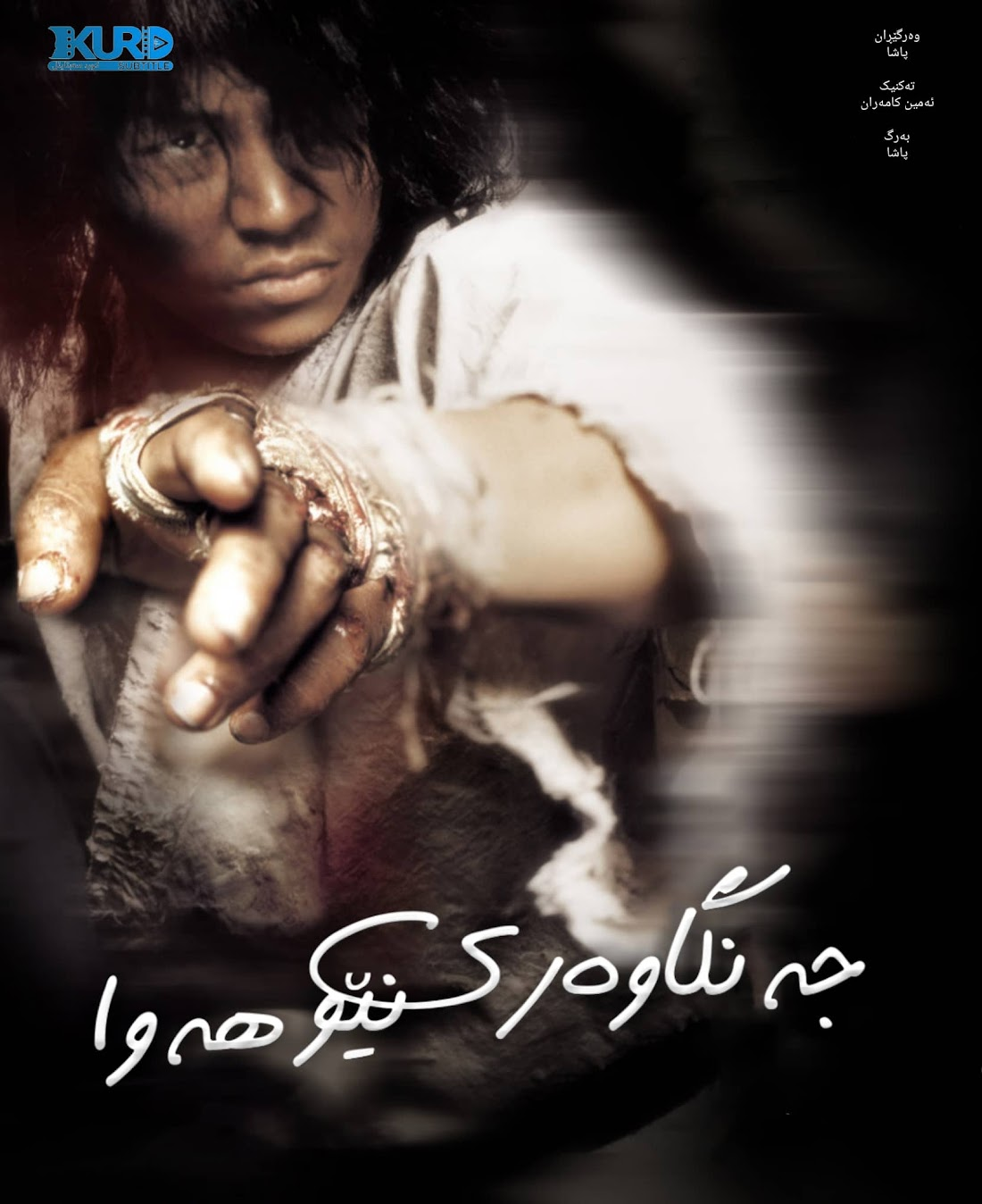 Fighter in the Wind kurdish poster