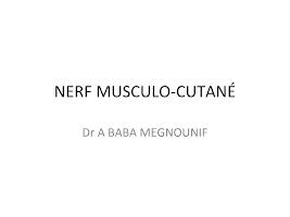 NERF MUSCULO-CUTANÉ - Univ Tlemcen.pptx