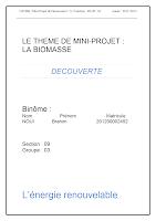 LE THEME DE MINI.docx