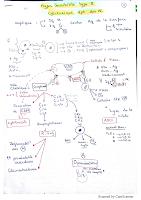 RHS type III resumé.pdf