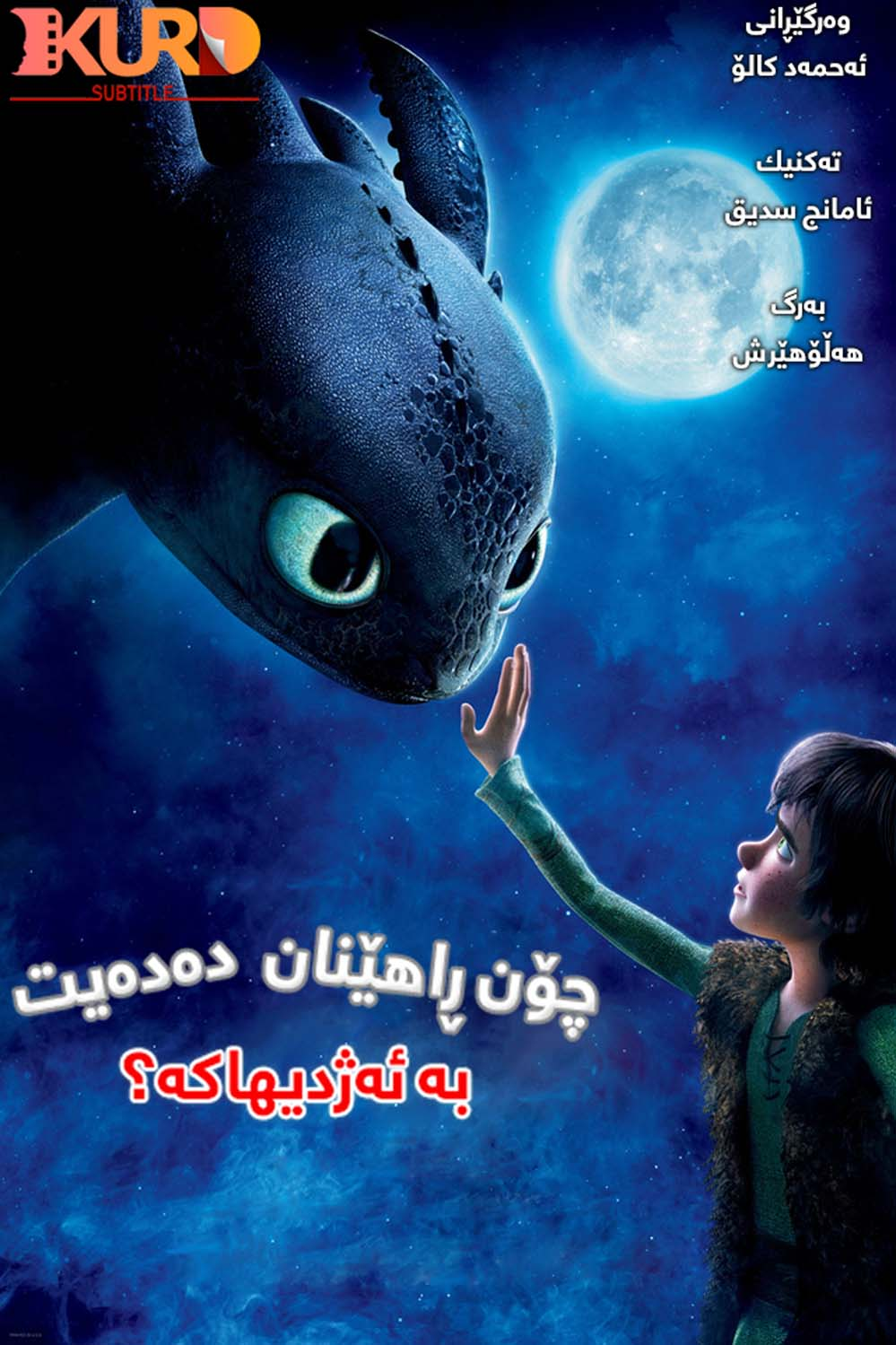 How to Train Your Dragon kurdish poster