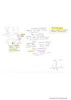 Péricardialgies resumé.pdf