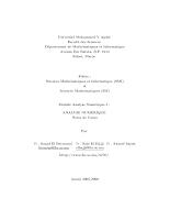 Analyse numerique - Bernoussi.pdf