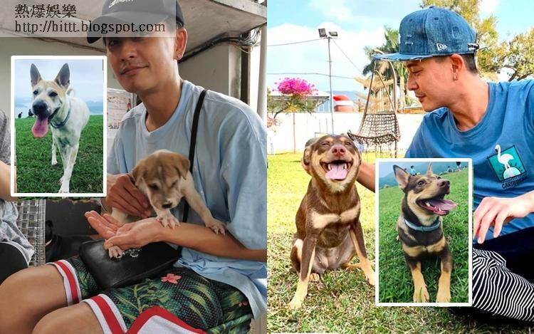 黃宗澤風騷晒新寵行山相,呢兩隻可愛狗女都係喺慈善動物團體中領養回來的。