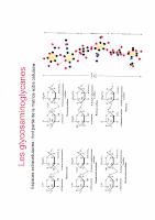 Les Glycosaminoglycanes.pdf