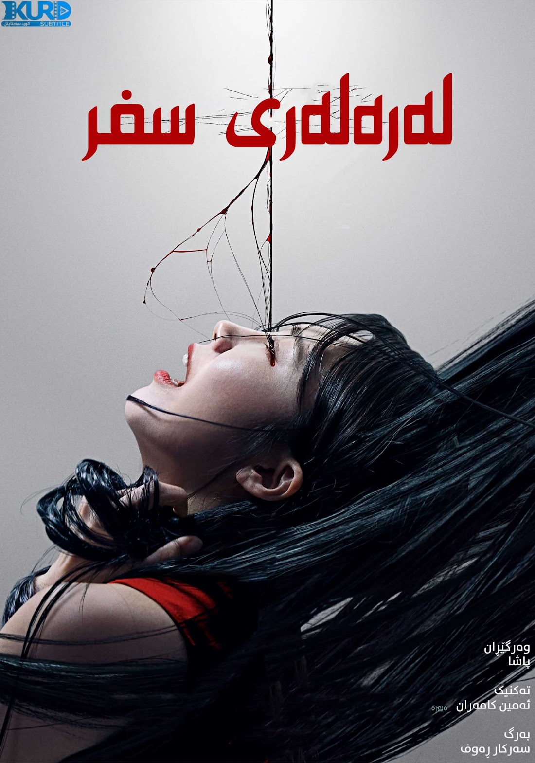 0.0MHz kurdish poster
