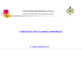 04-Surrénales_2017.pdf