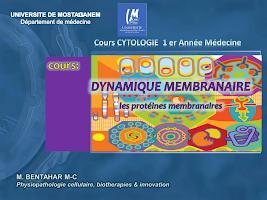 COURS -physiologie membranaire Pt 3.pdf