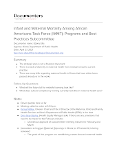Infant and Maternal Mortality Among African Americans Task Force (IMMT): Programs and Best Practices Subcommittee
