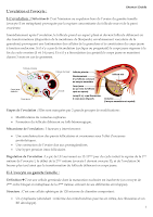 résumé Ovulation.pdf