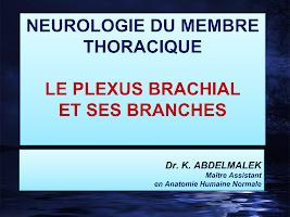 Neuro-MS-CD1 (1).pptx