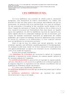 Epithéliums de Revetement Polycopié (2017-2018).pdf