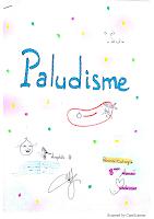 8-Paludisme resumé.pdf
