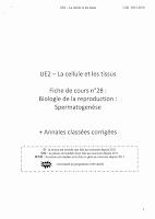 Spermatogenèse Lille.pdf