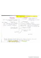 Dysphagie resumé.pdf