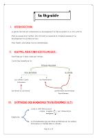 La thyroide résumé.pdf