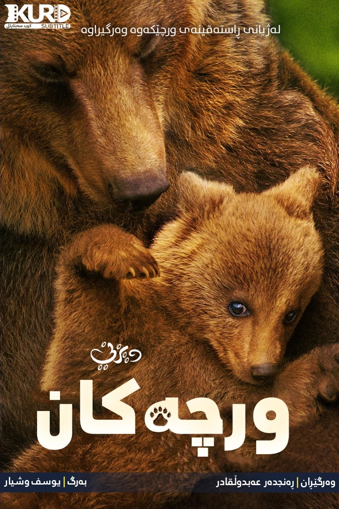 Bears kurdish poster