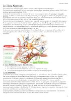 Résumé t_nerveux.pdf