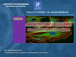 cell microT _ Fil P2.pdf