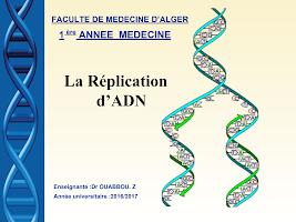 4) Réplication de l_ADN .ppt