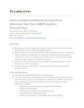 Infant and Maternal Mortality Among African Americans Task Force (IMMT): Systems Subcommittee