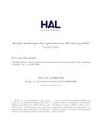 Analyse numerique des equations aux derivees partielles.pdf