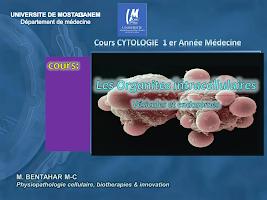 Vésicules et Endosomes.pdf