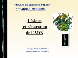 8) Mutation et réparation de l_ADN.ppt