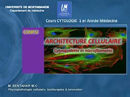 cell microfil P1.pdf