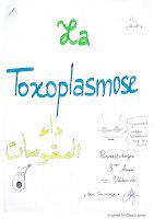 7-Toxoplasmose resumé.pdf