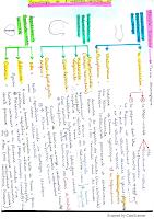 Guide semio app génital mal resumé.pdf
