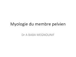 shémas Myologie du membre pelvien.pptx