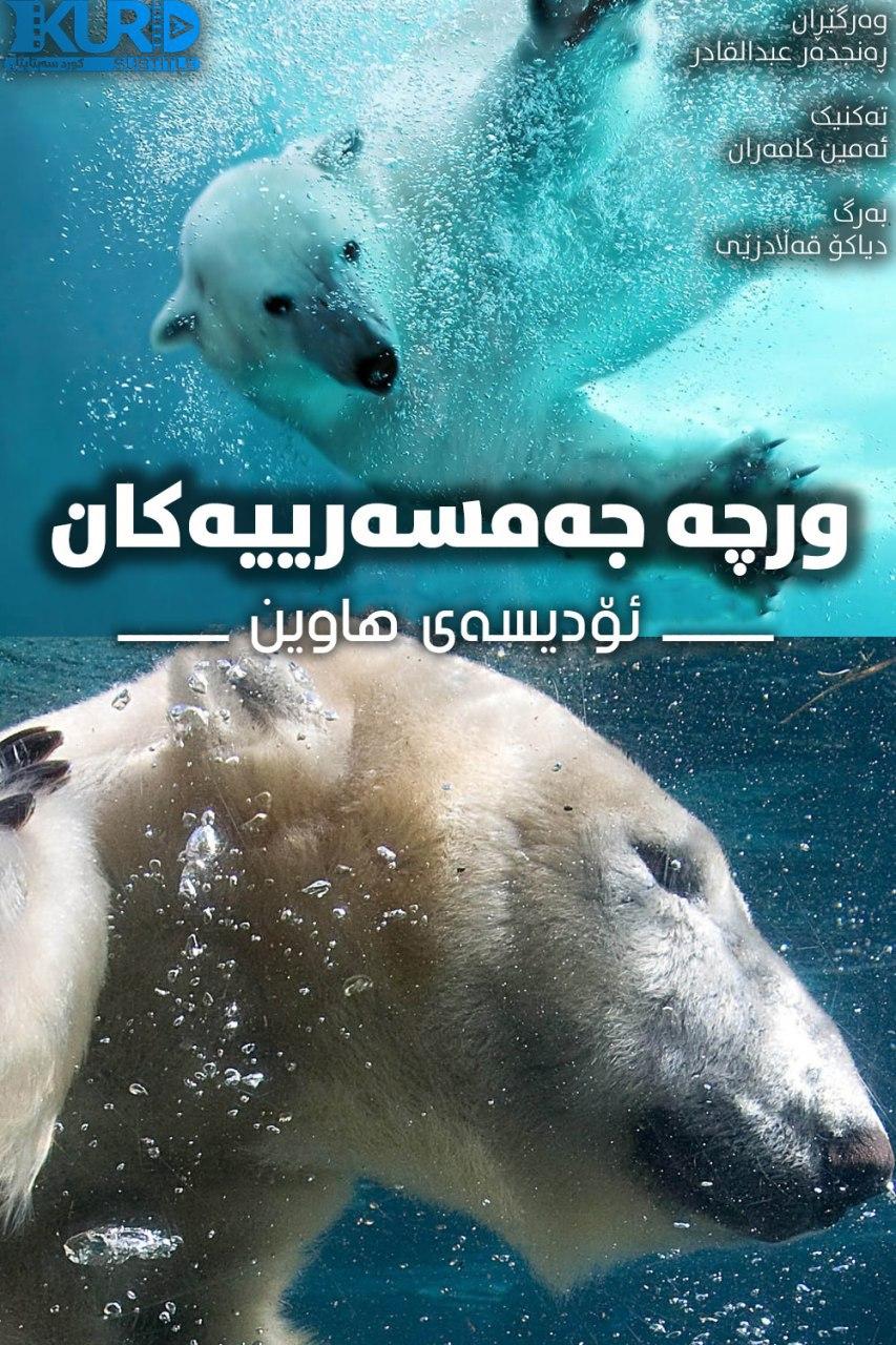 Polar Bears: A Summer Odyssey kurdish poster