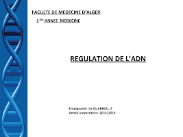 7) Régulation de l_ADN .pptx