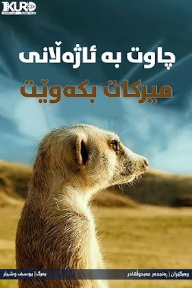 Meet the Meerkats Poster
