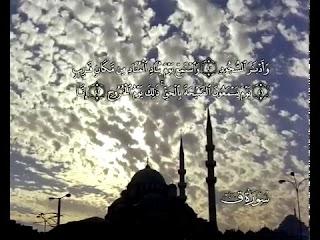 Sure  Qaf<br>( Qaf) - şeyh / Mahmoud AlHosary -