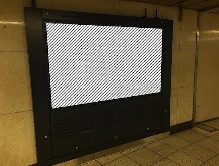 MWV (MetroWallVision)