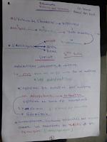 resumé de cours.pdf