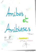2-Amibes et amibiases resumé.pdf
