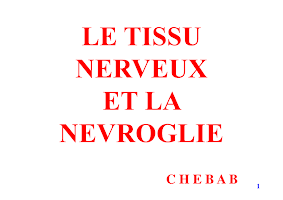 Diapo Tissu Nerveux(2017-2018).pdf