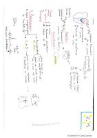 qq valvulopathies resumé.pdf