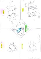 Téléthorax schéma resumé.pdf