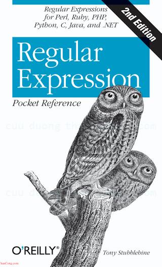 Regular Expression Pocket Reference, 2nd Edition.pdf