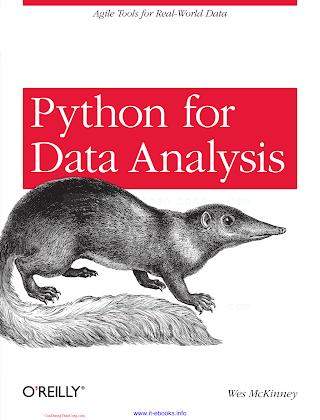 Python for Data Analysis.pdf