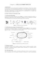 chapitre 1 cellule procaryote.pdf
