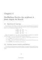Oscillations Forcées à Deux Degrés De Liberté_cours_univ_Diederot.pdf