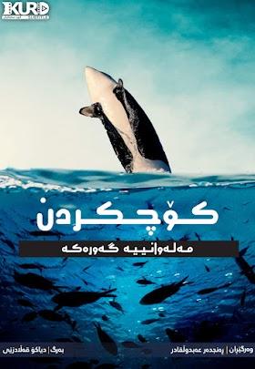 Migrations The Big Swim Poster